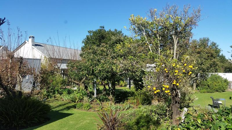 Property For Sale in Greyton, Greyton 23